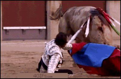 Becoming A Bullfighter